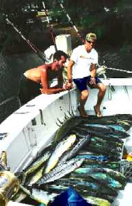 Record Mahi Catch