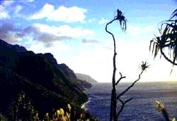 Na Pali Coast Courtesy of